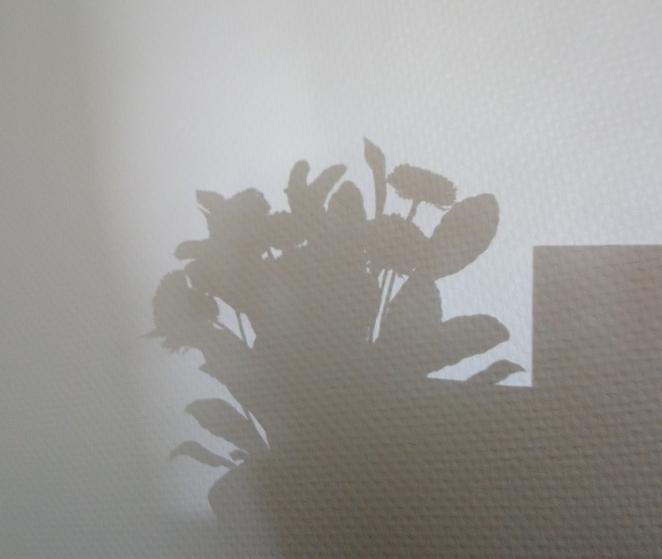 flowers in the window (2)